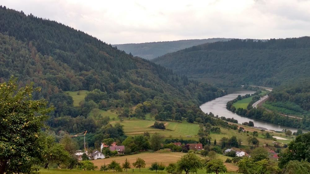 Bewaldete Berglandschaft mit Fluss